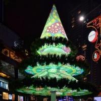 עשרה עצי חג מולד מקוריים ומ