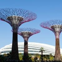 אחד משלושה פיינליסטים בתחרות ארכיטקטורה