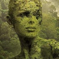 הטבע באומנות דיגיטלית מדהימה