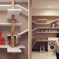 עיצוב דירה המתייחס גם לחתול