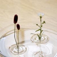 אגרטל צף ושקוף לפרח אחד שנר