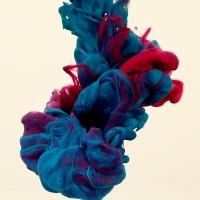 אמן בצבע ואומנות דיגיטלית,